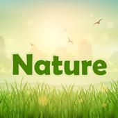 Memory Nature 004 icon