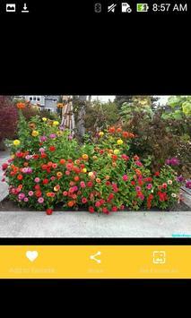 Flower Garden Landscaping Design screenshot 5