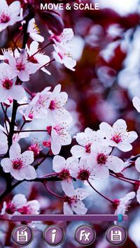 Spring Flowers Backgrounds HD poster