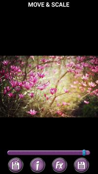 Spring Flowers Backgrounds HD screenshot 2