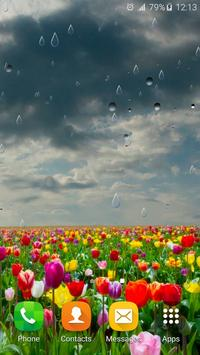 Spring Rain Live Wallpaper apk screenshot