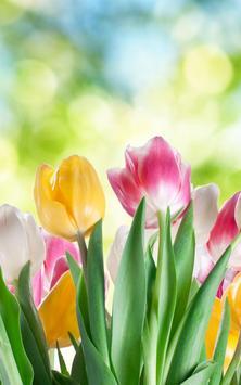 Tulip Live Wallpaper screenshot 2