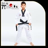 Taekwondo Techniques icon