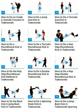 Taekwondo Techniques apk screenshot