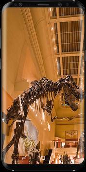 Smithsonian Fans Channel screenshot 2