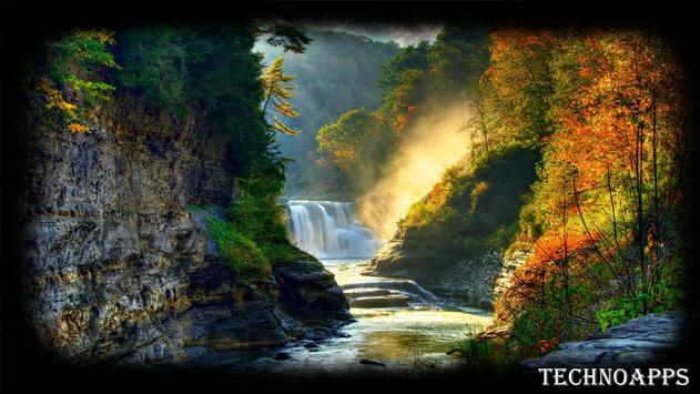 Forest Waterfall Wallpaper poster