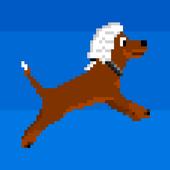 Washington's Wig icon