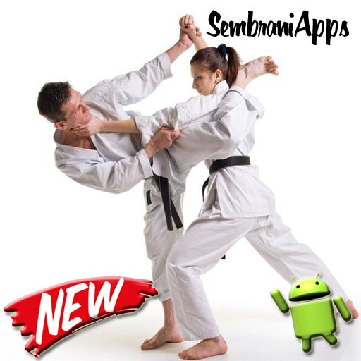 Learn The Best Martial Arts For Android Apk Download