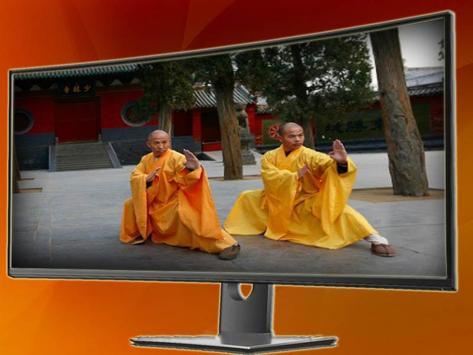 Shaolin Martial Technique screenshot 4
