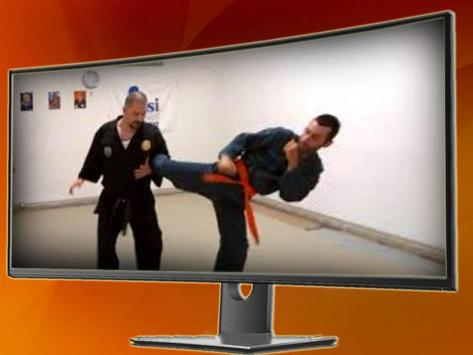 The Shorinji Kempo Martial Technique screenshot 4