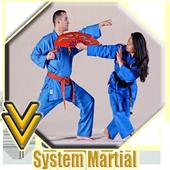 Systema Maintenance Technique icon