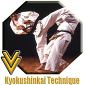 Kyokushin Kaikan Technique icon
