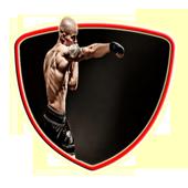 Free Boxing Technique icon