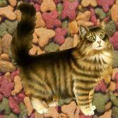 Fatty Cat - The Big Adventure icon