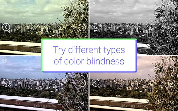 Colorblind VR poster