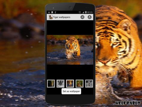 Tiger Wallpapers apk screenshot
