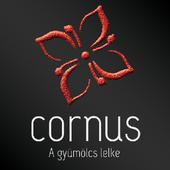 Cornus Palinka icon