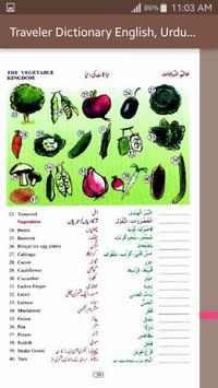Traveler Dictionary English, Urdu and Arabic screenshot 7