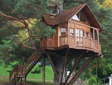 Tree House Design poster