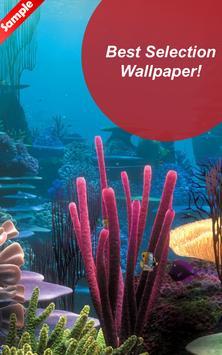 Undersea Wallpaper HD - Fanny screenshot 1
