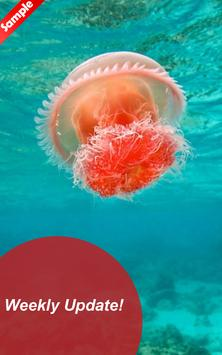 Undersea Wallpaper HD - Fanny screenshot 3
