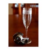 Unique  Wine Glasses icon