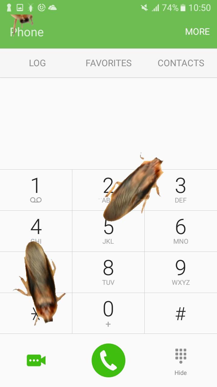 Kecoa Di Layar Lelucon Gambar Lucu Bergerak For Android