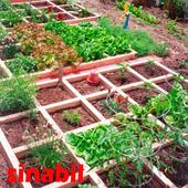 Vegetable Garden Design icon