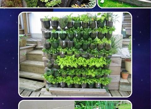 Vegetable Garden Design screenshot 1