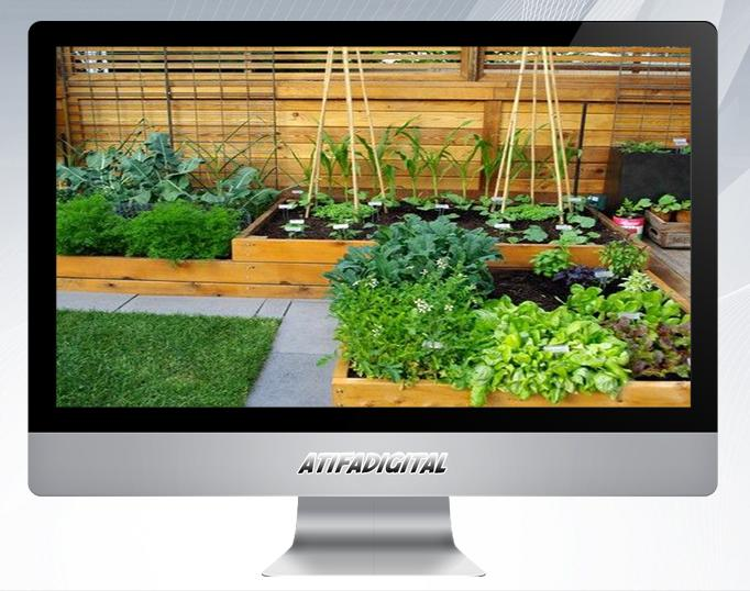 Vegetable Garden Ideas For Android Apk Download