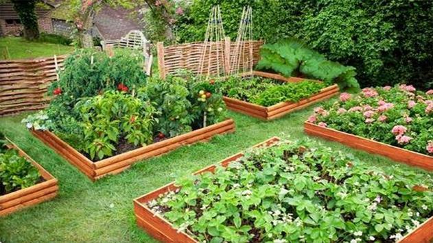 Vegetable Garden Ideas screenshot 1