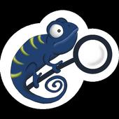 Veiled icon