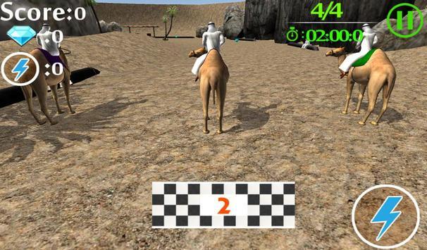 camel race poster