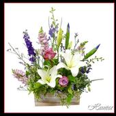 Vons Flowers Prices icon