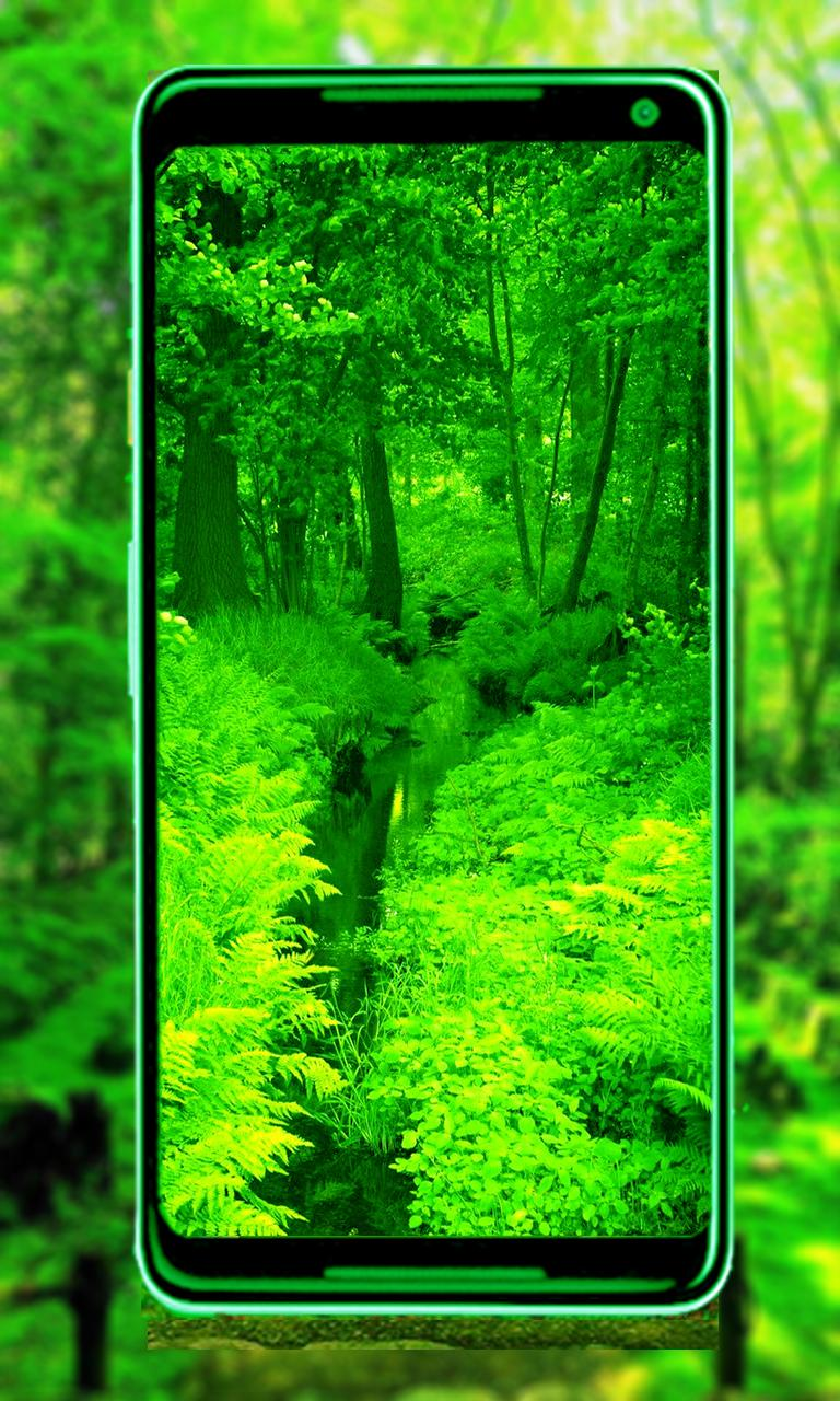 Green Nature New Hd Wallpaper For Android Apk Download