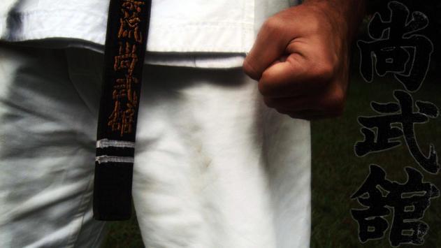 Martial Arts Pack 2 Wallpaper apk screenshot