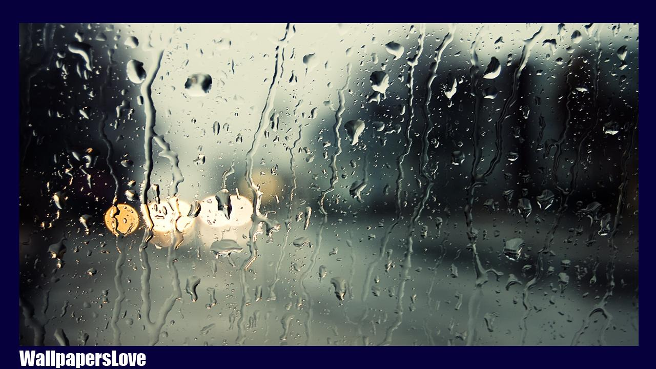 Rain Live Wallpaper For Android Apk Download