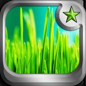 Green Grass theme icon