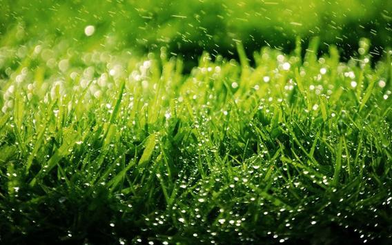 Green Grass theme poster