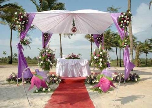 Wedding Decoration Idea screenshot 5