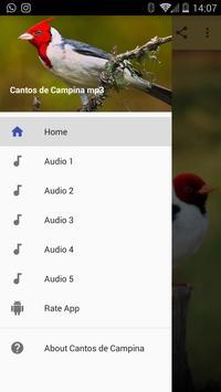Cantos de Campina mp3 screenshot 3