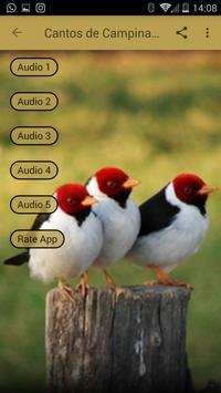Cantos de Campina mp3 screenshot 1
