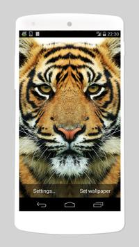 wild animals live wallpapers poster