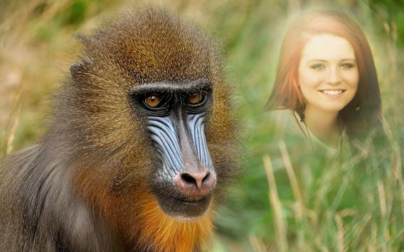 Wildlife Photo Frames APK Download - Free Personalization APP for ...