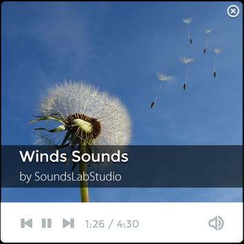 Natural Wind Sounds poster
