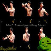 Best Wing Chun Engineering Strategy icon