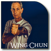 Wing Chun Lessons icon