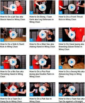 Wing Chun Lessons apk screenshot