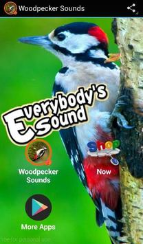 Woodpecker Sounds poster