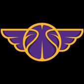Dream Leagues icon